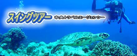沖縄ダイビングツアーならスイングツアー